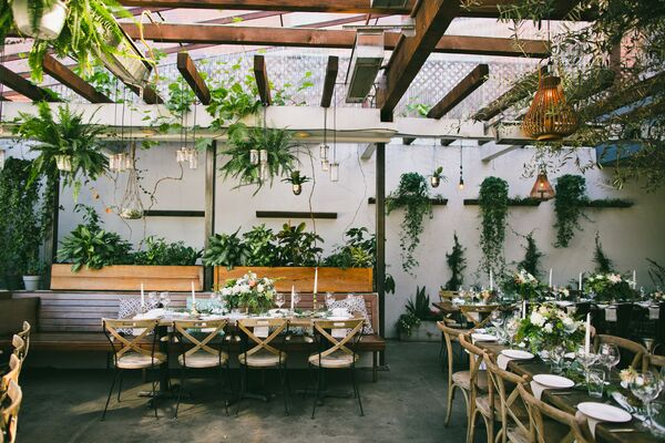 Rustic Bohemian Reception with Hanging Plants