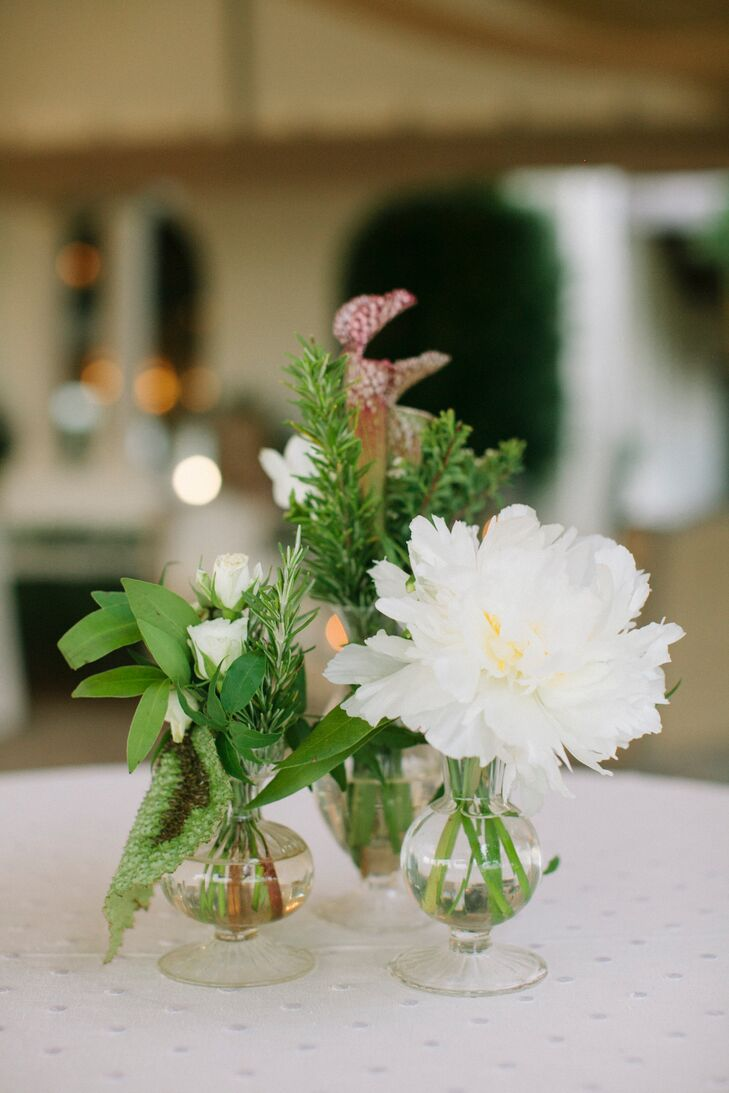Wild bud vase centerpieces with pitcher plant