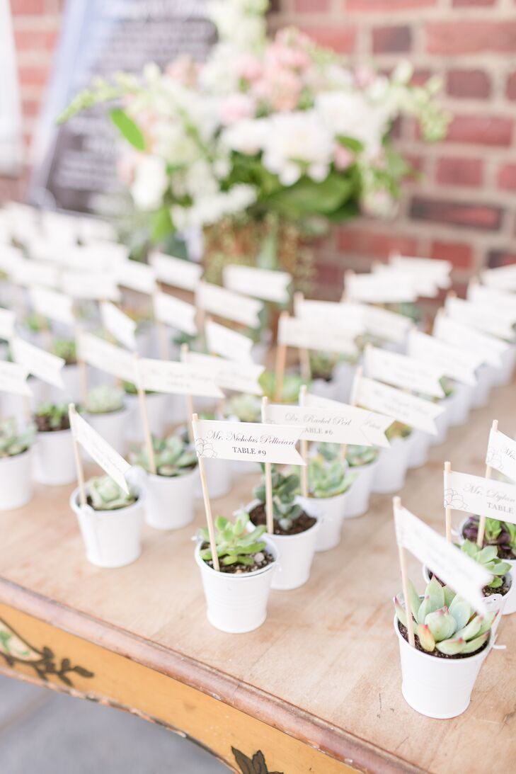 Succulent Seating Assignment and Favors