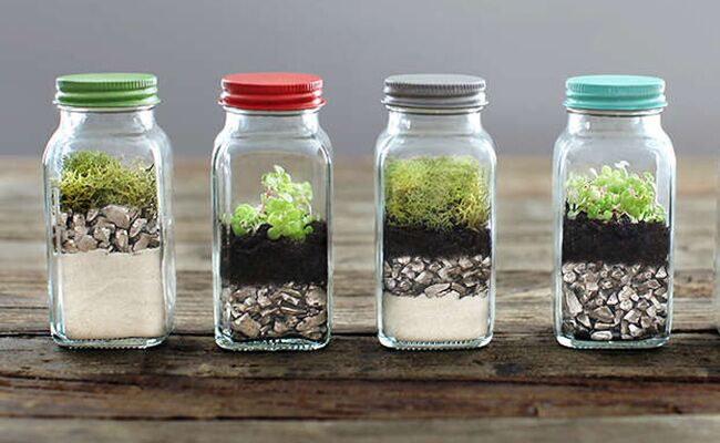 12 Tiny Tabletop Terrariums You Can DIY