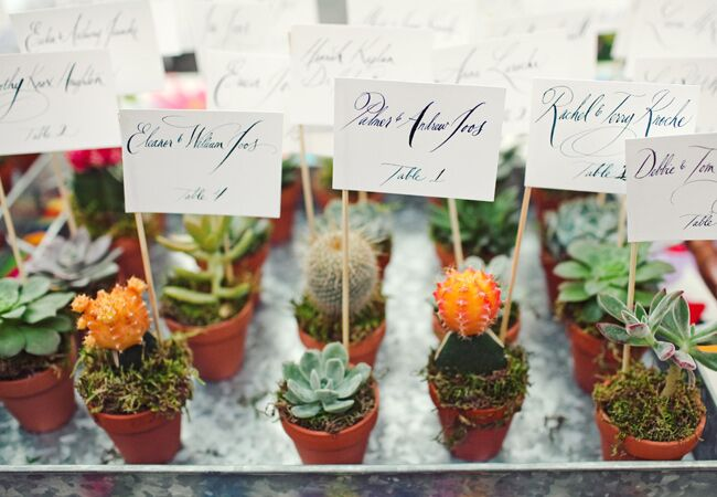9 creative ways to use potted plants in your wedding