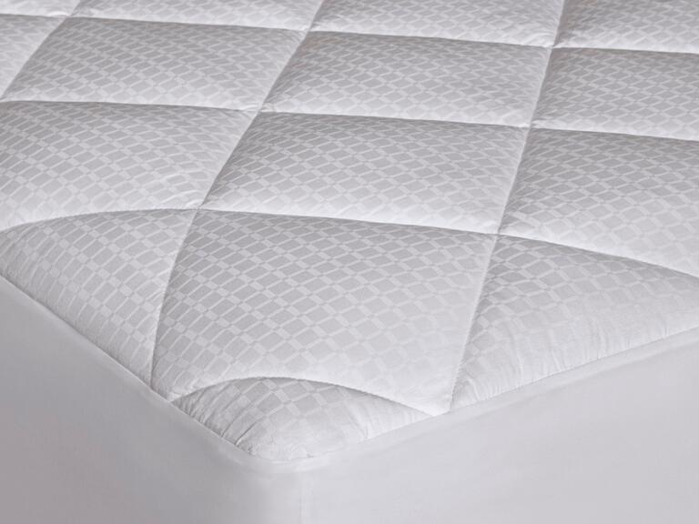 Dream Solutions allergen barrier mattress pad from Sears