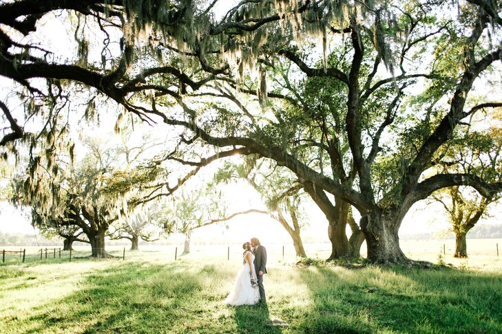 Romantic Spanish-Moss-Covered Live Oak Tree Ceremony Location