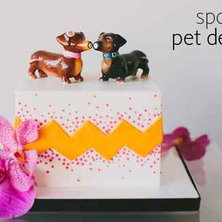 Include Your Pet In Your Wedding Even If They Can't Be There (See the Ideas!)
