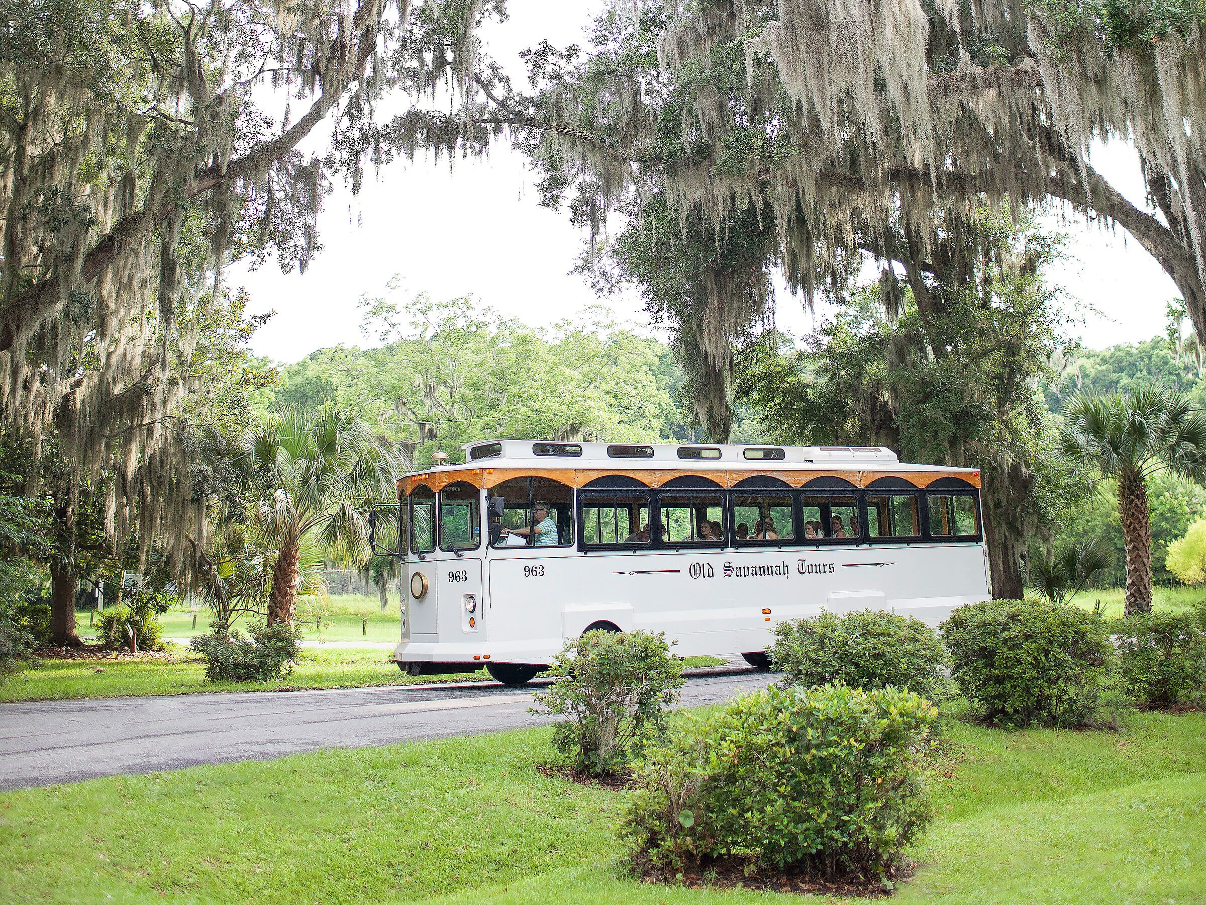 Wedding Transportation Basics