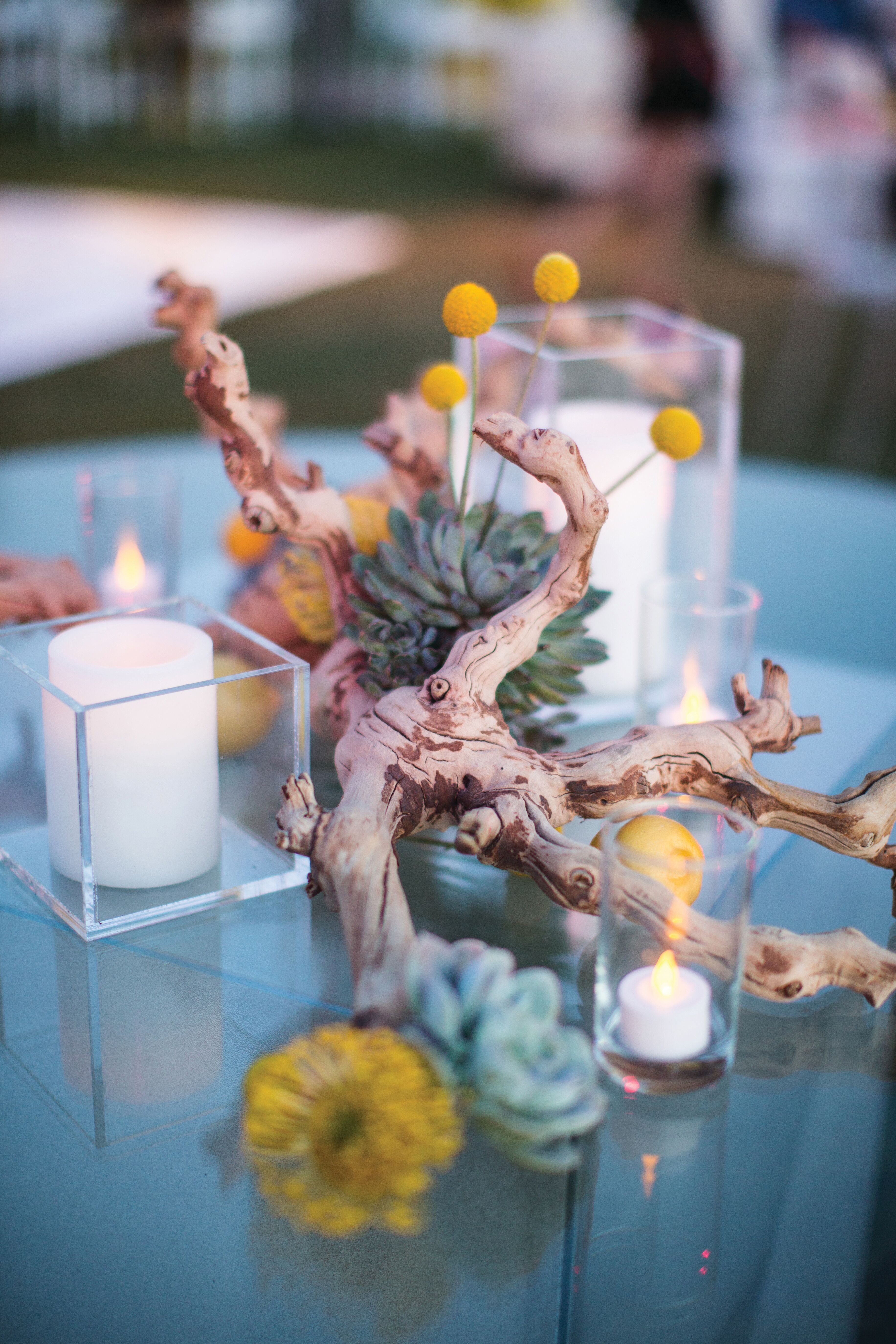 Rustic Succulent And Driftwood Centerpieces