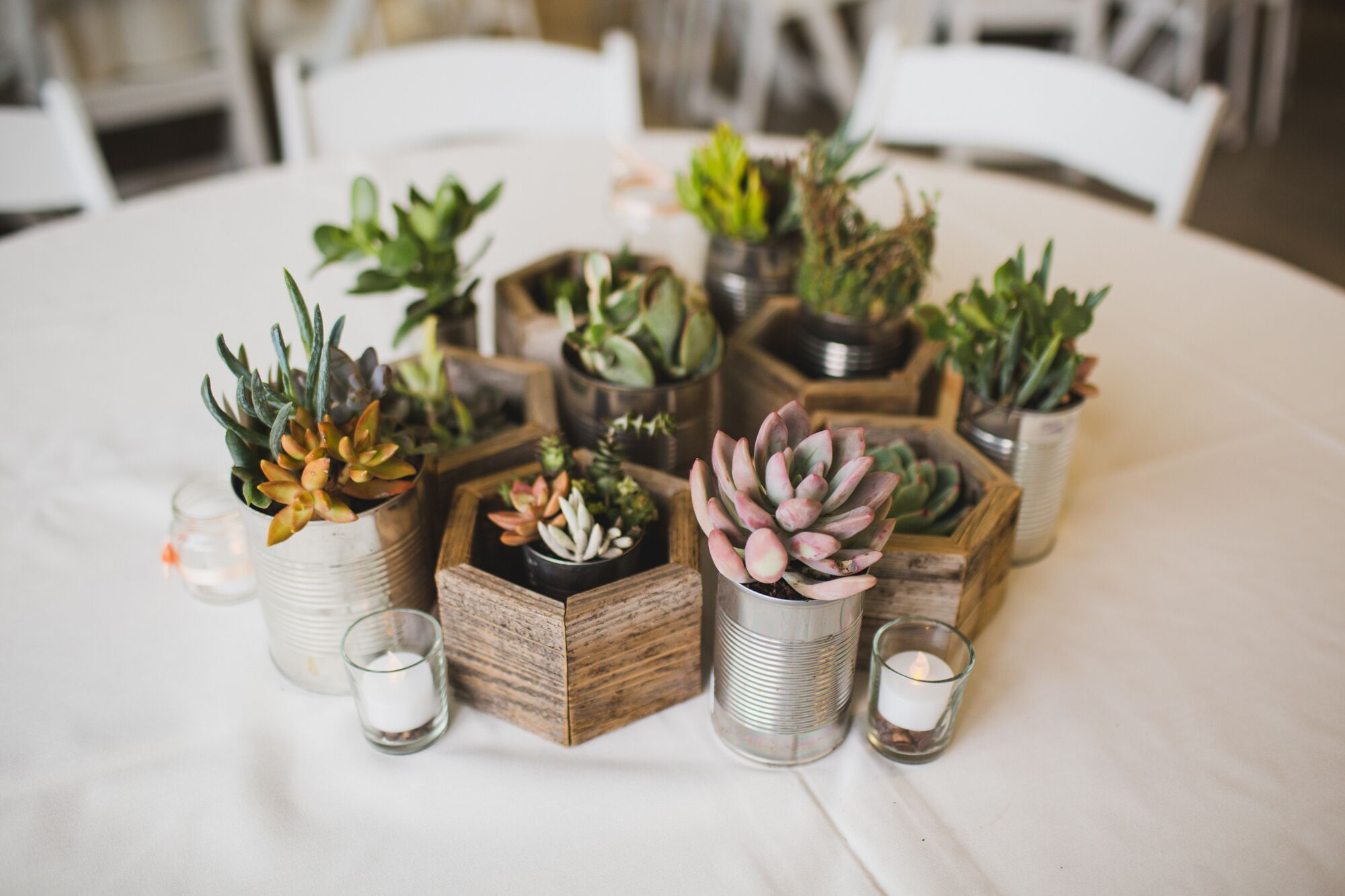 Diy wedding centerpieces diy succulent centerpieces in recycled planters solutioingenieria Gallery