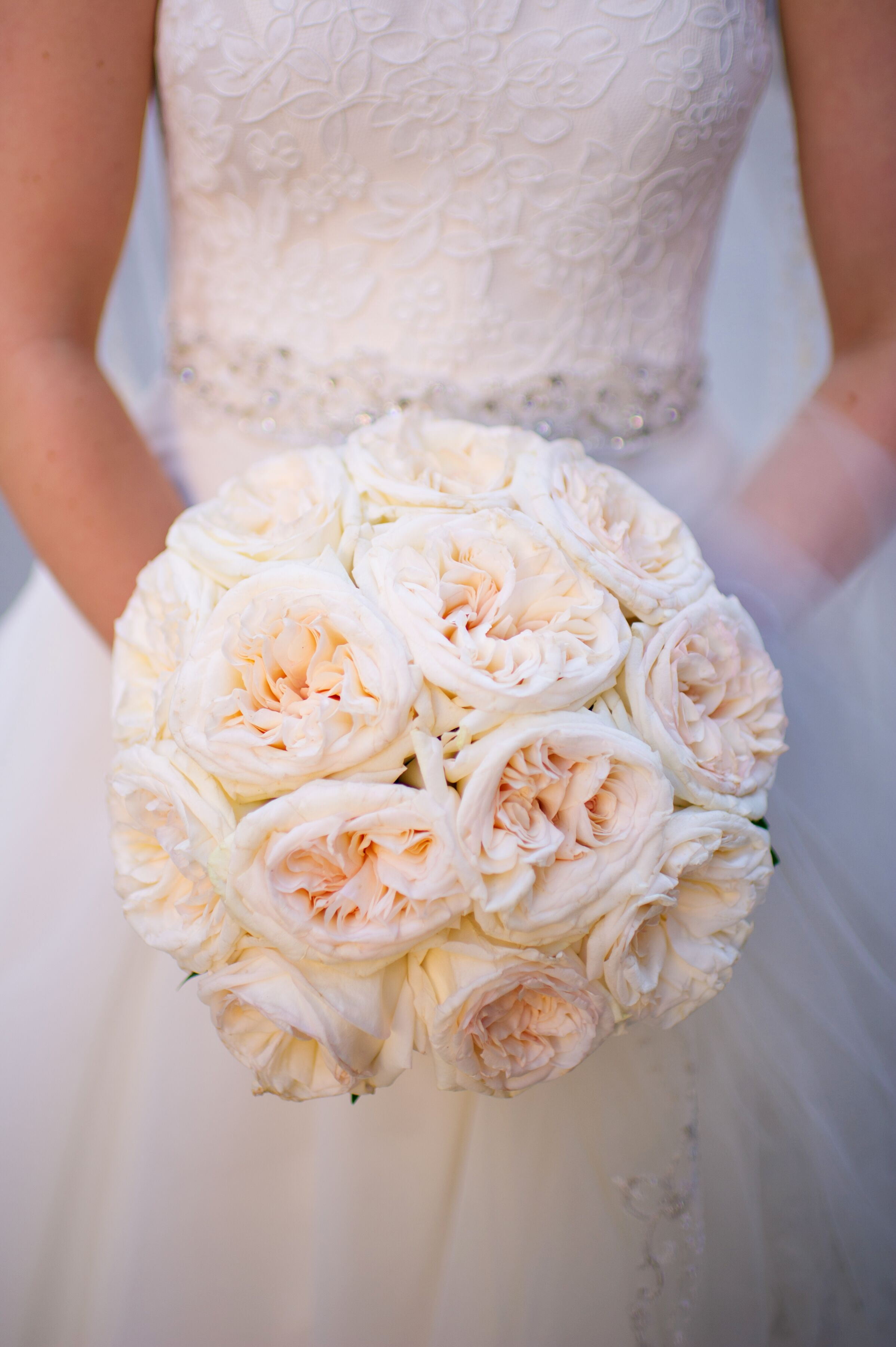 Blush Garden Rose Bridal Bouquet