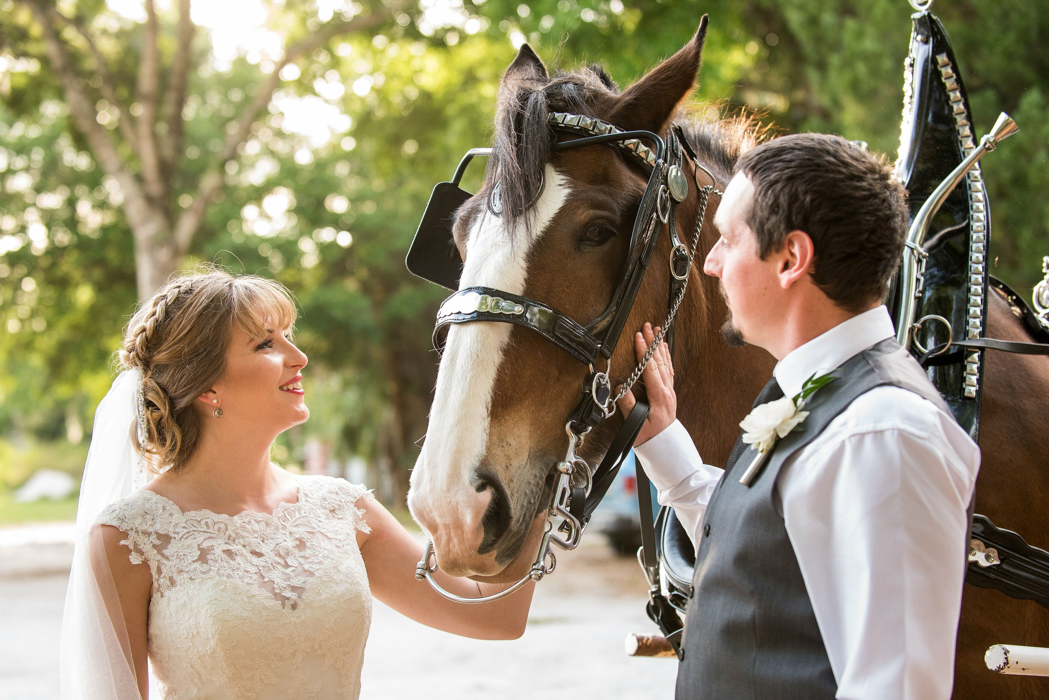 Myers Wedding Gift Registry: A Rustic, Spring Wedding At Buckingham Farms In Fort Myers