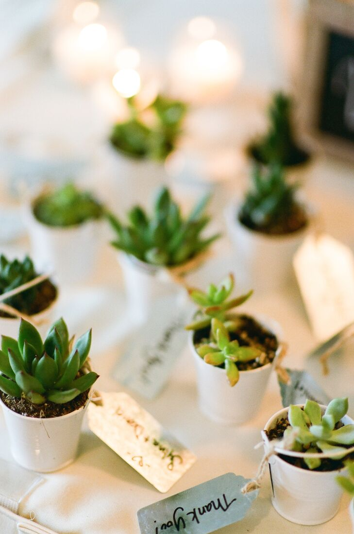 "At the end of the evening, Sylvia and Daniel sent their friends and family members home with pint-size pots filled with lush green succulents. ""We wanted our guests to take with them a piece of our wedding that would last beyond the night itself,"" Sylvia says, ""so we bought baby succulents from California for them to take home as a reminder that love continues to grow with proper care."""