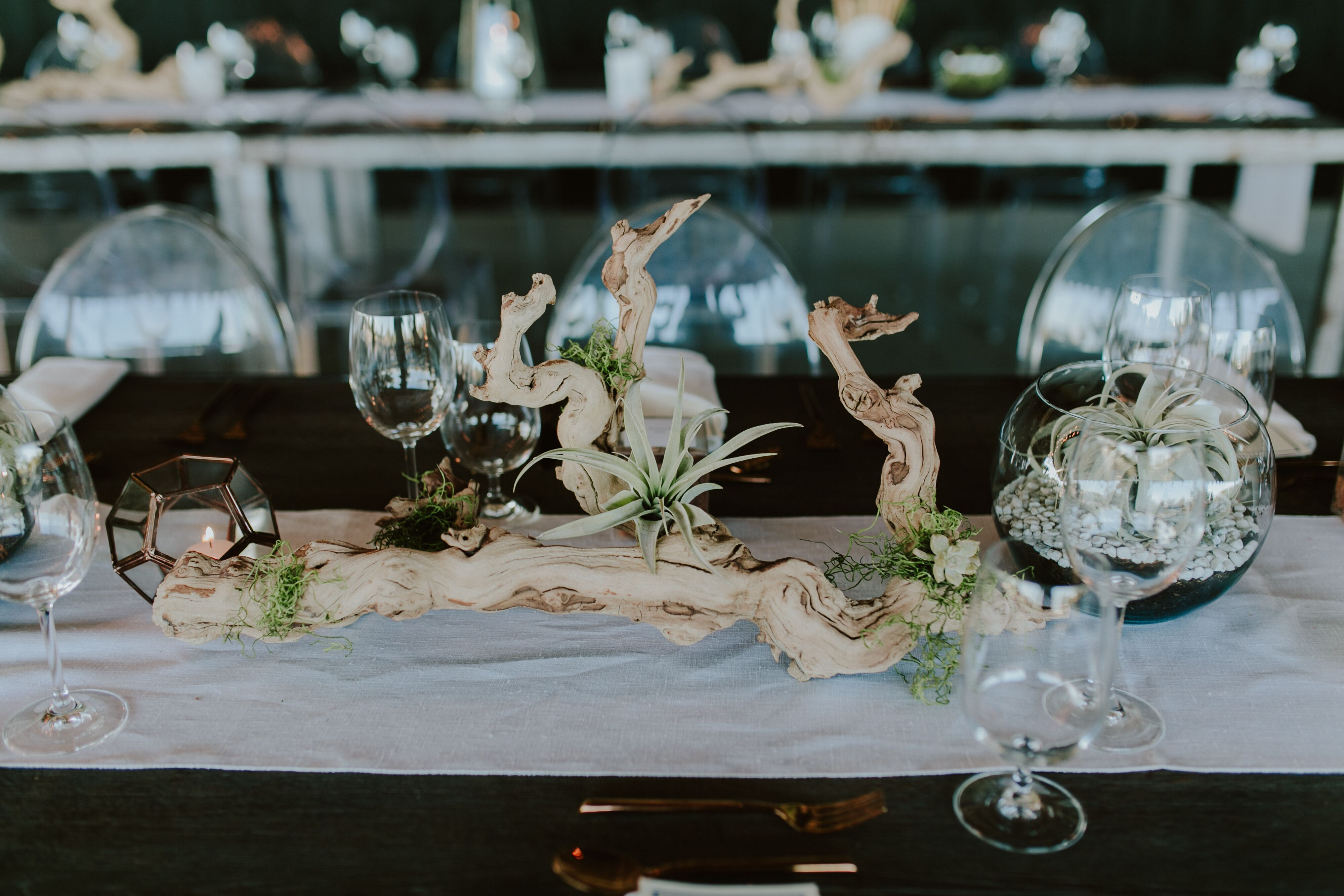 Succulent And Driftwood Centerpieces