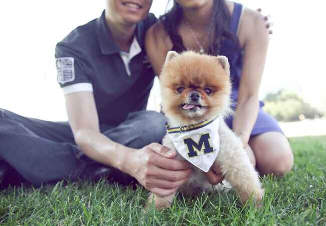 Engaged couple with Pomeranian