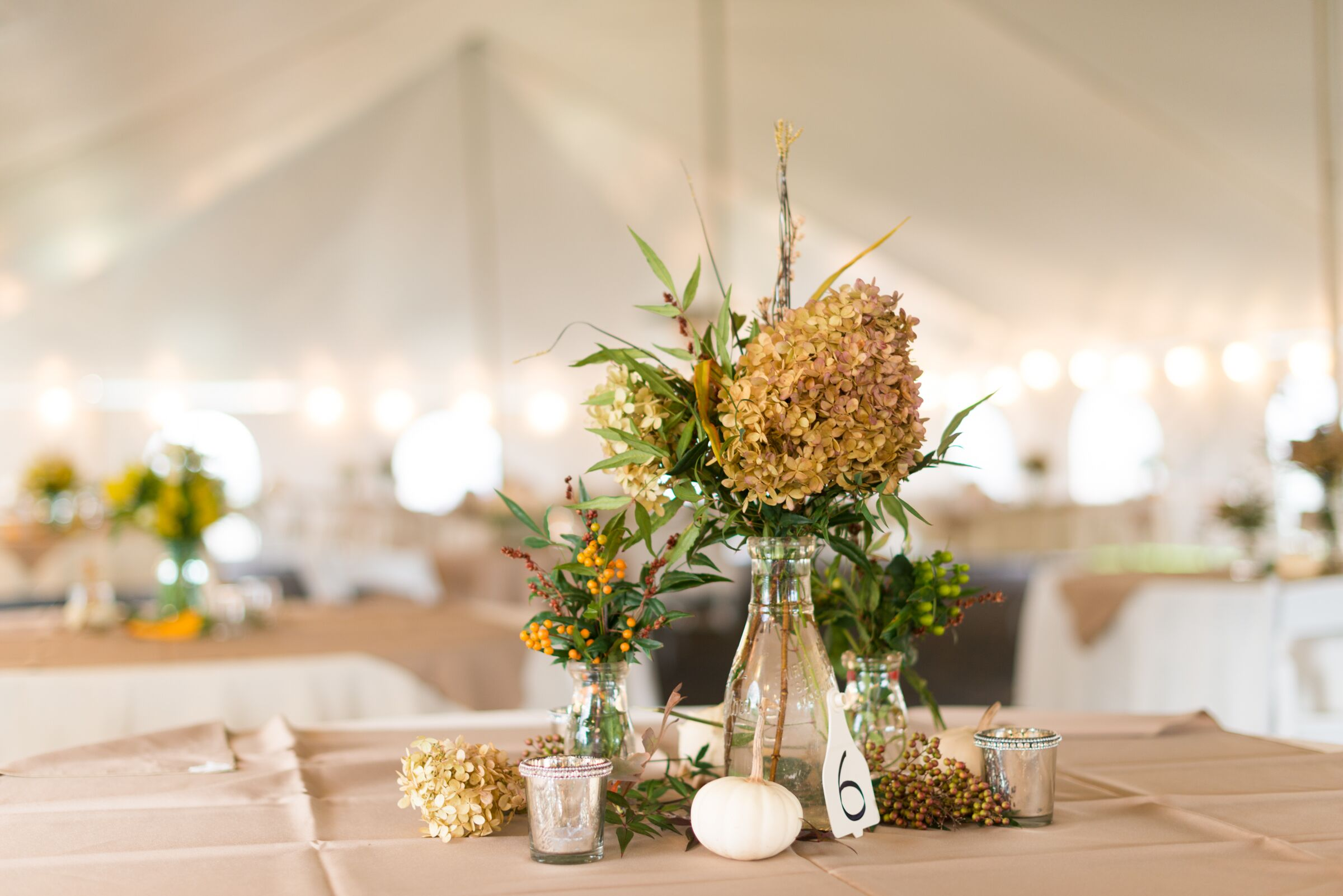Centerpieces with dried hydrangeas and hypercium