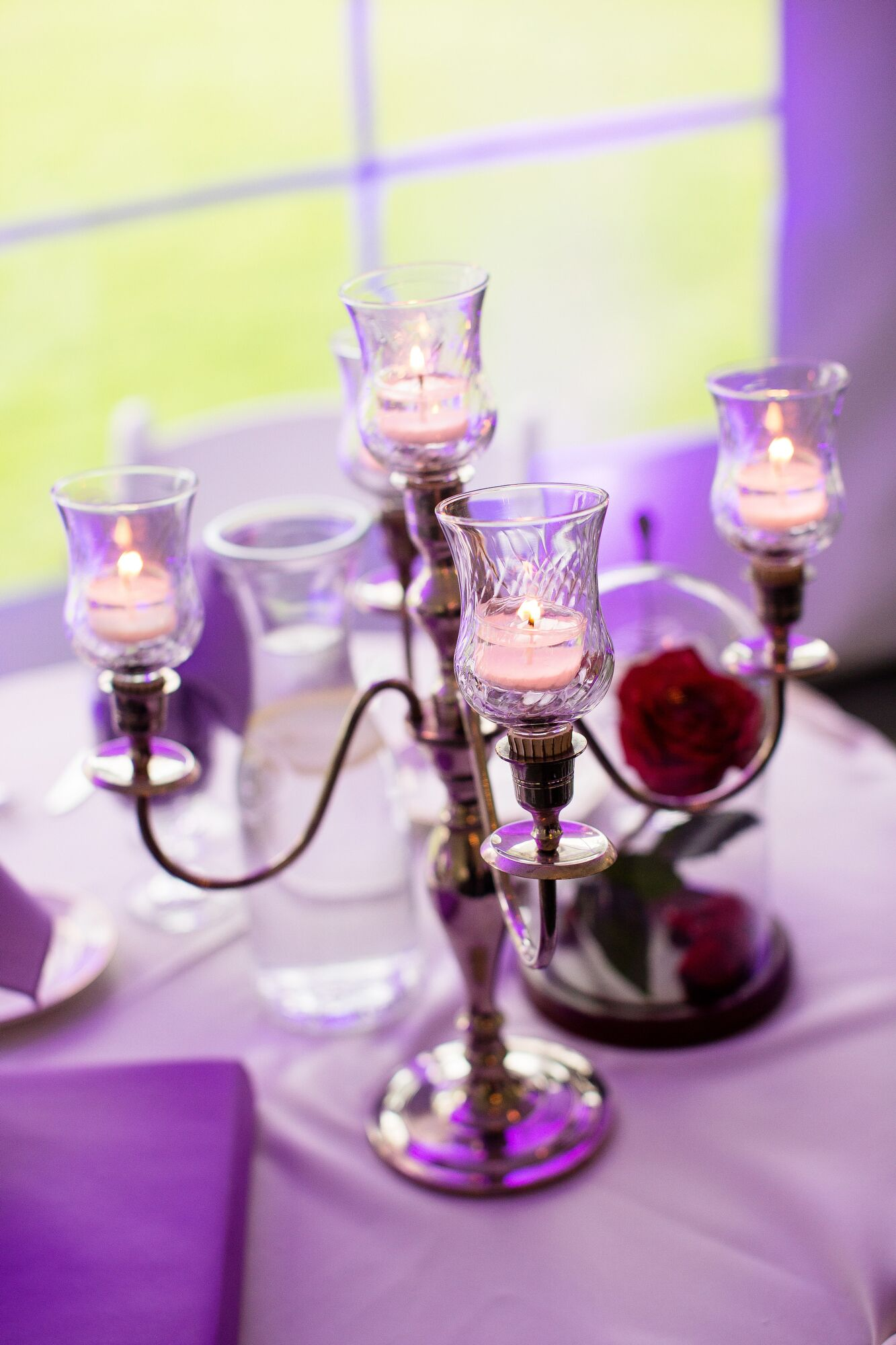 Beauty-and-the-Beast-Inspired Candelabras and Glass-Domed Rose ...