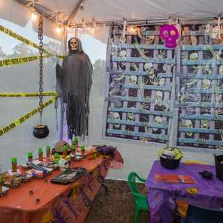 A Halloween Themed Wedding in Lithia, FL