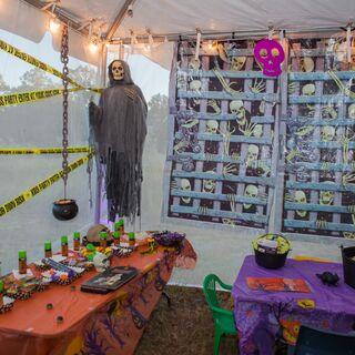 fl a halloween themed wedding in lithia fl