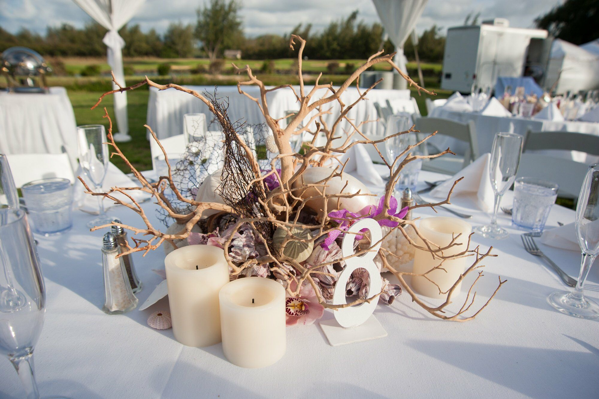 Driftwood And Seashell Centerpieces