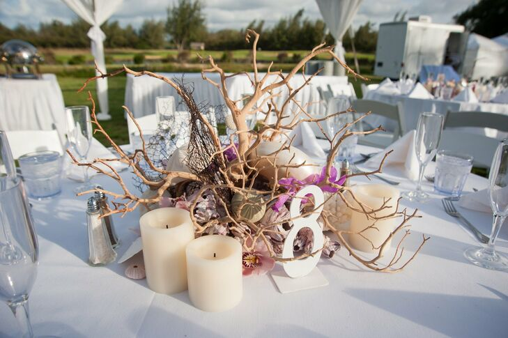 Driftwood and seashell centerpieces for Driftwood table centerpieces