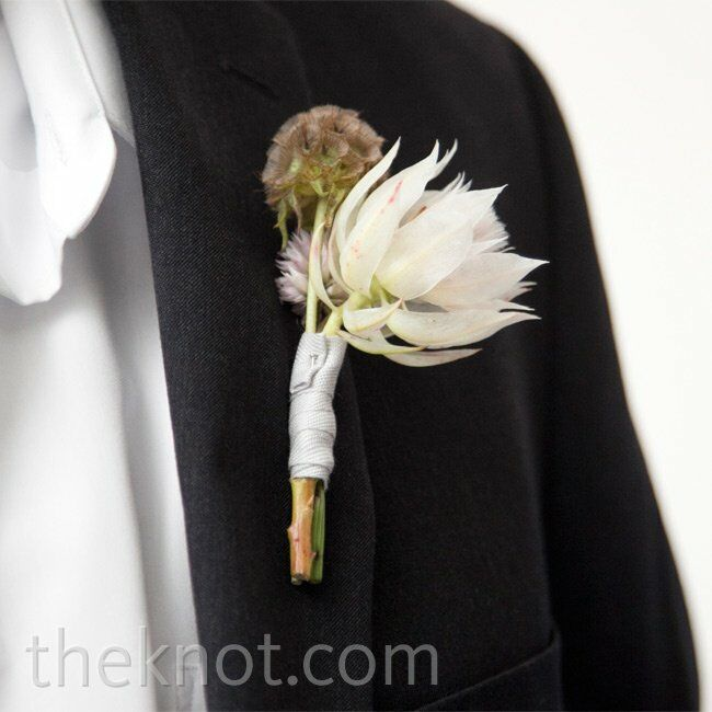 The guys wore blushing bride, silver brunia and plume celosia boutonnieres.