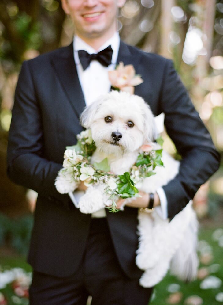 Katie and Dave's playful pup joined them at the altar, adorned with a lush collar of verdant greenery and delicate ivory blooms.