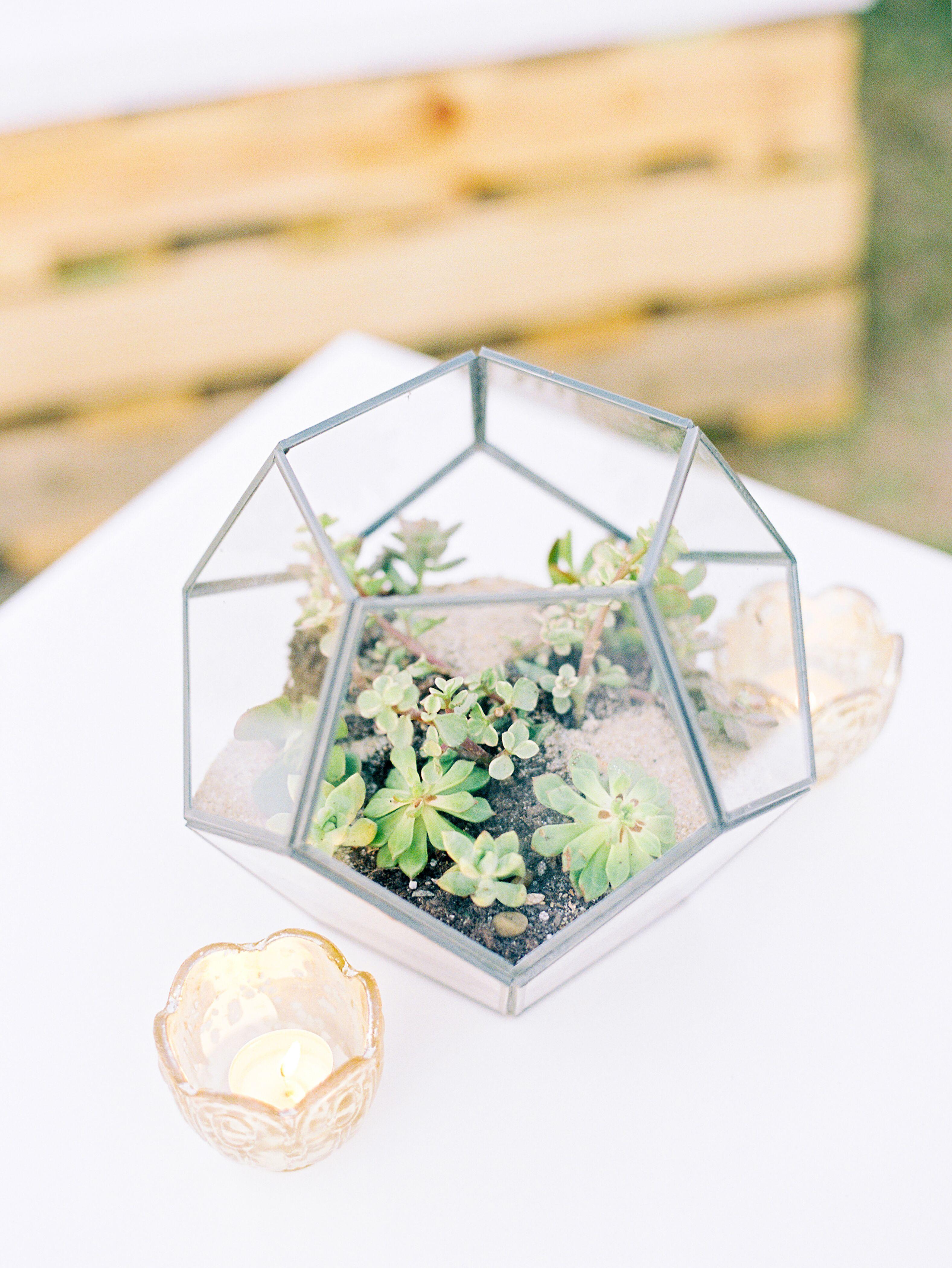Geometric Succulent-Filled Terrarium Wedding Centerpiece