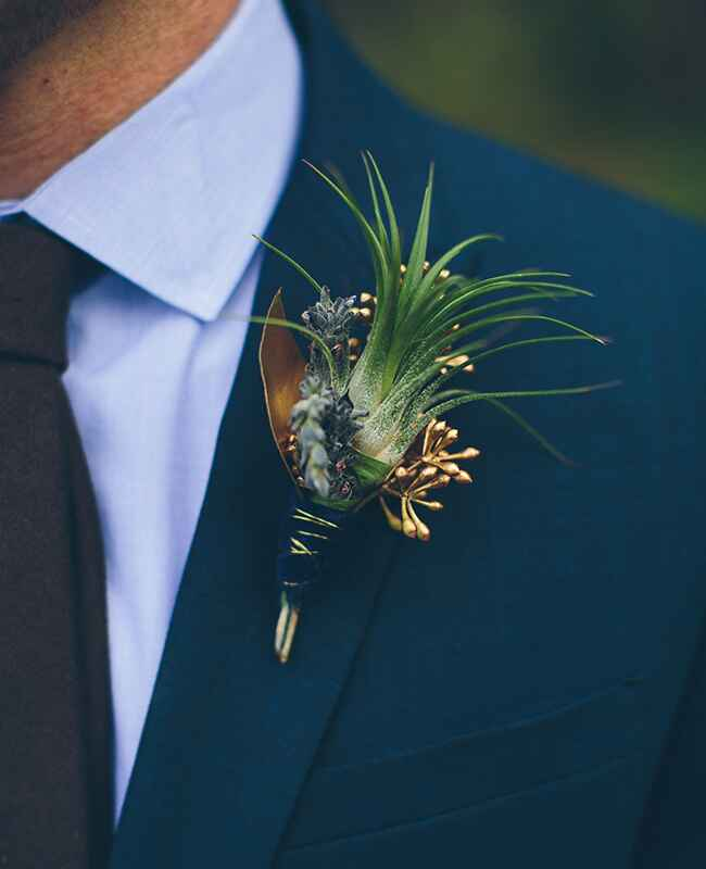 air plant boutonniere |<img class=