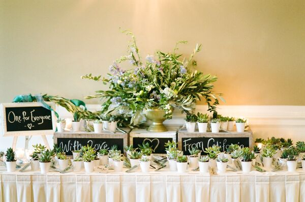 Display Table with Succulent Wedding Favors