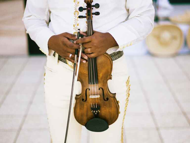 Wedding reception violin