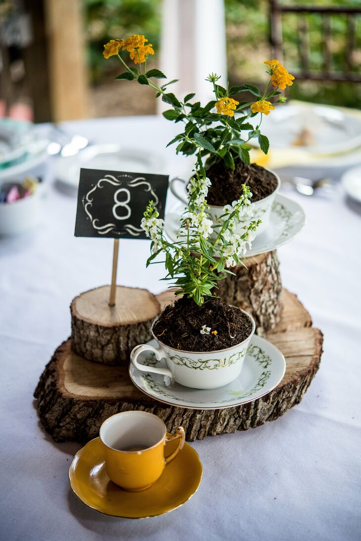 Rustic wood and teacup centerpiece