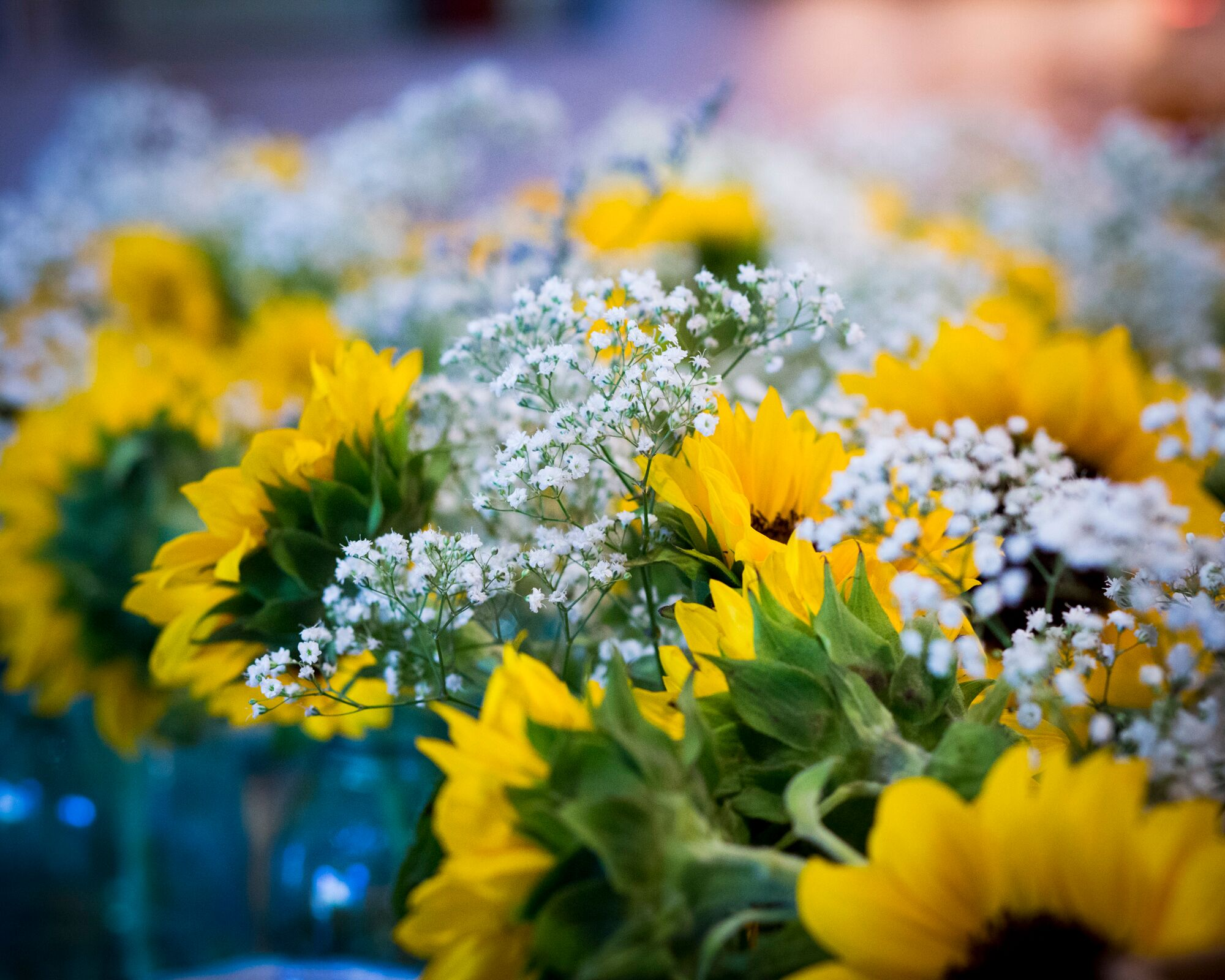 Sunflower And Baby S Breath Centerpieces