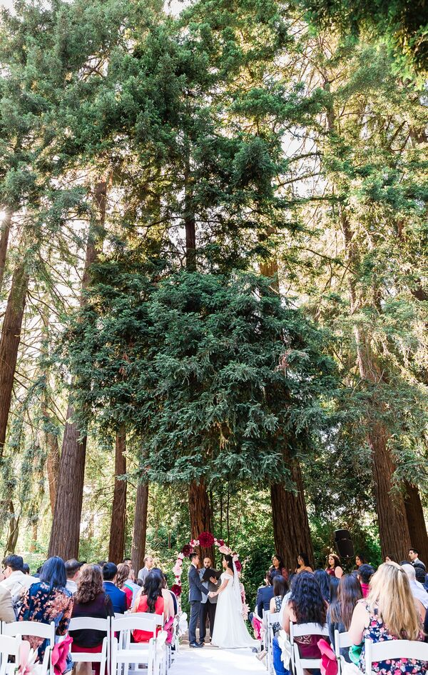 Redwood Forest Ceremony
