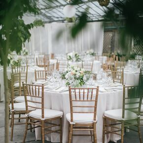 Elegant And Green Reception