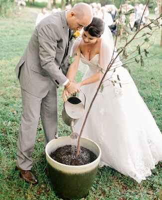 Potted plant Wedding Ideas
