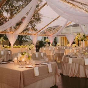 Champagne Wedding Decorations Accents