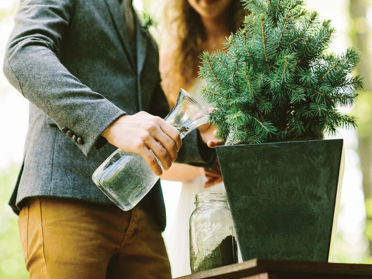 Wedding couple watering a plant for union ceremony