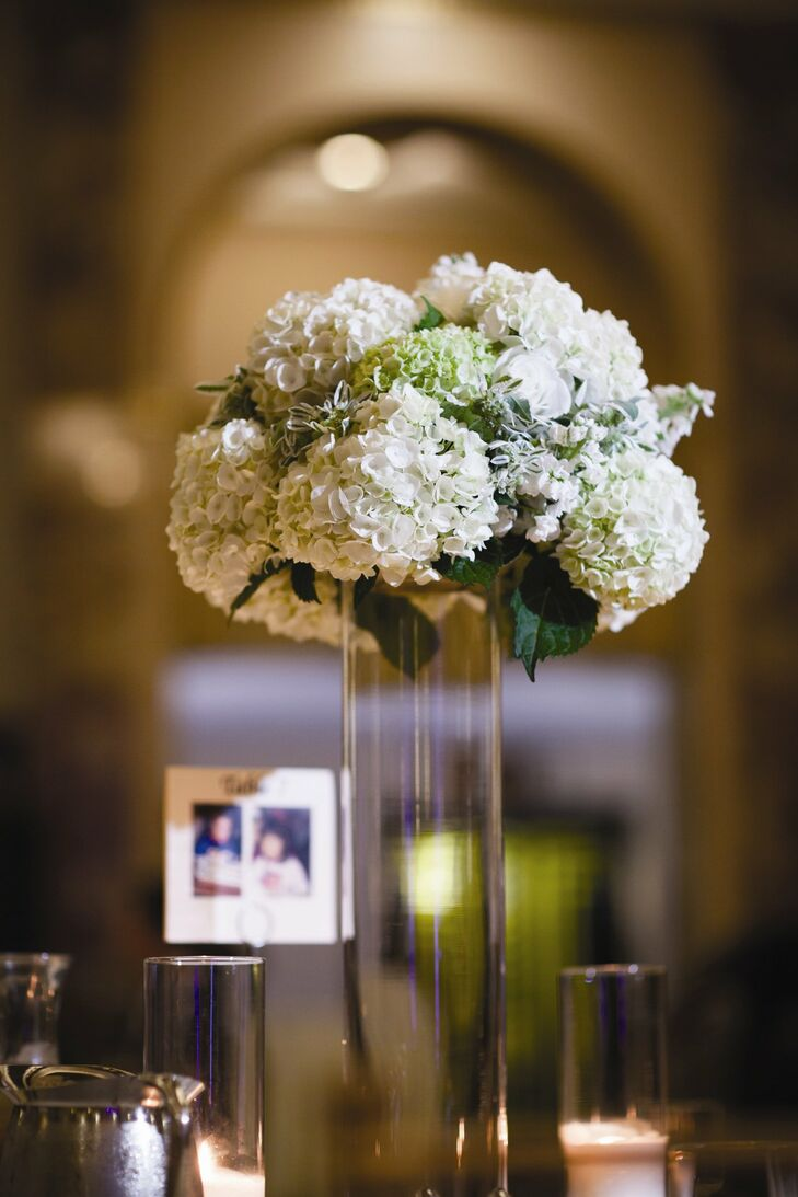 Tall cylinder vases were topped with round bouquets of white and light green hydrangeas.
