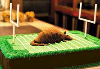Armadillo Football Field