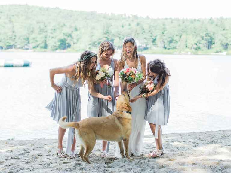 Bridal party playing with a dog on the beach