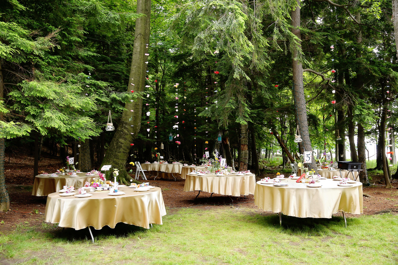 Rustic Backyard Wedding Reception