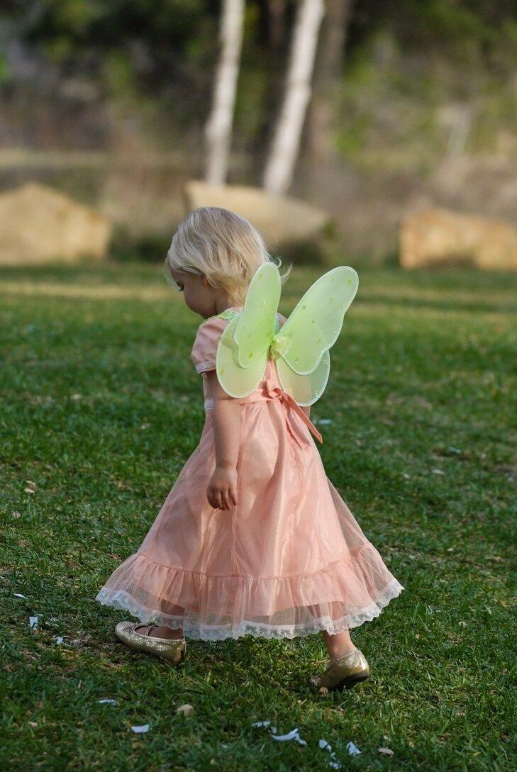 Flower girl dressed in a pink dress and green fairy wings