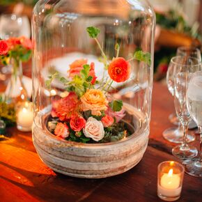 Coral wedding decorations accents glass cloche centerpieces with succulents and coral flowers junglespirit Images