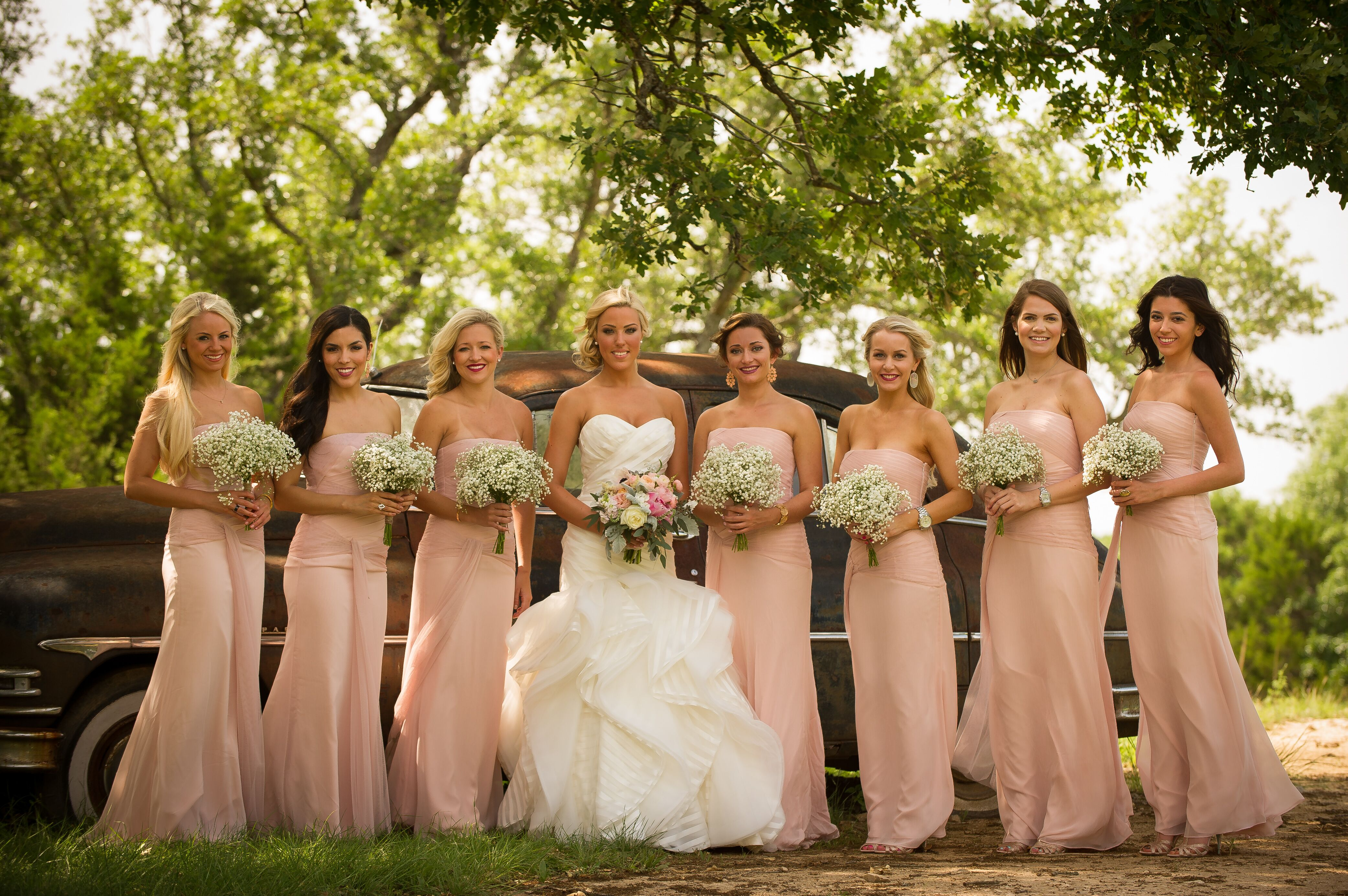 Blush Chiffon Vera Wang Bridesmaids Dresses