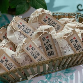 hand illustrated favors