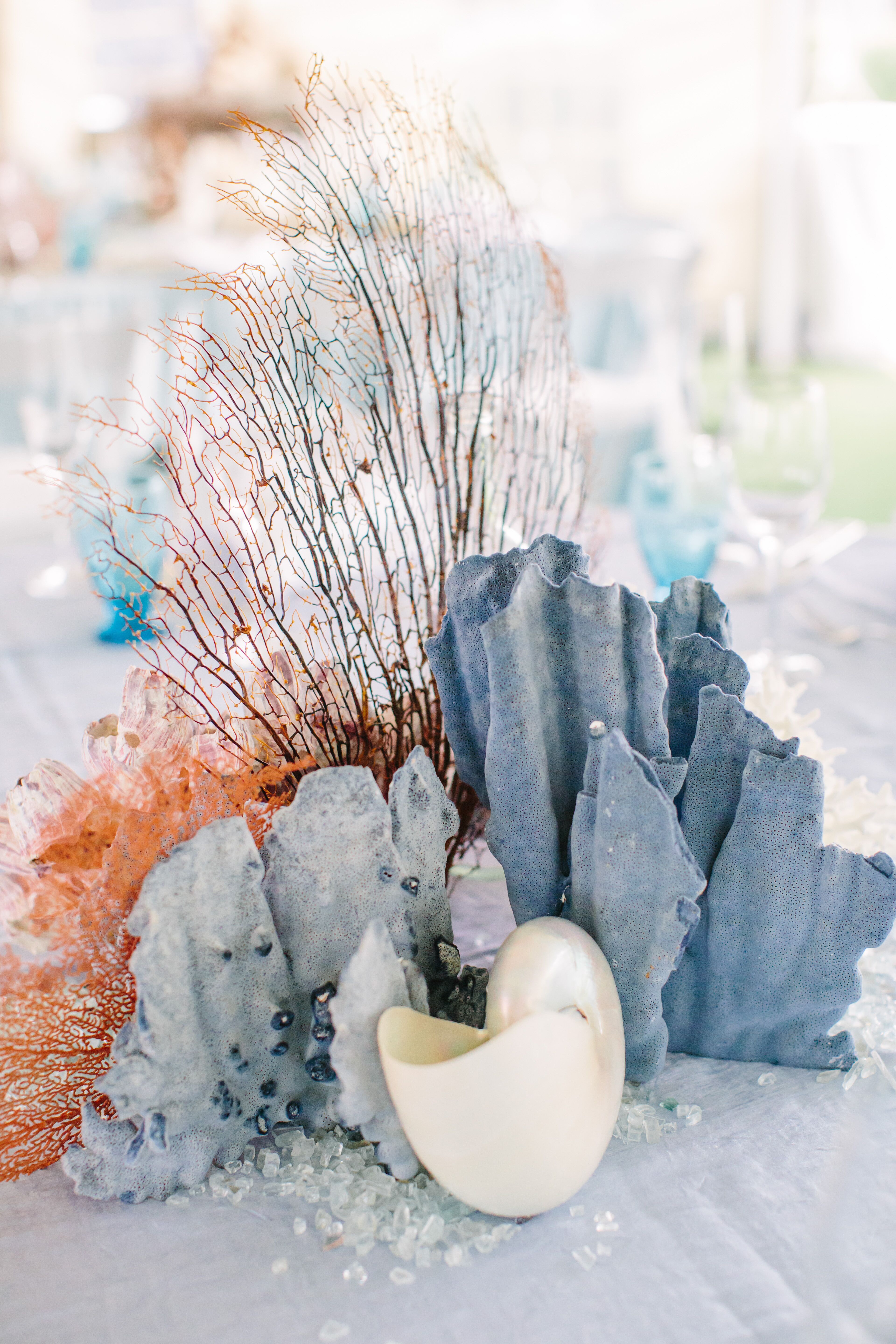 Blue coral and seashell centerpiece