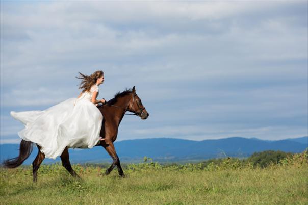 Wedding Reception Venues in Virginia Beach, VA - The Knot
