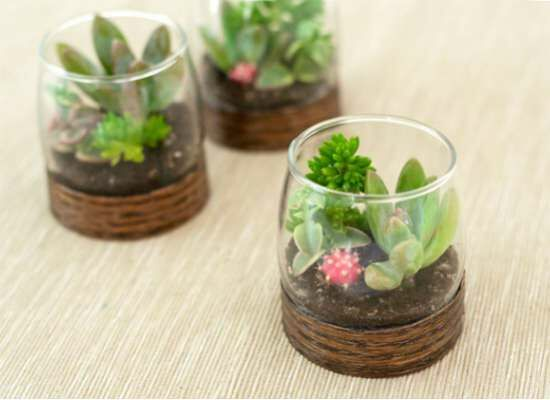 12 Tabletop Terrariums You Can DIY