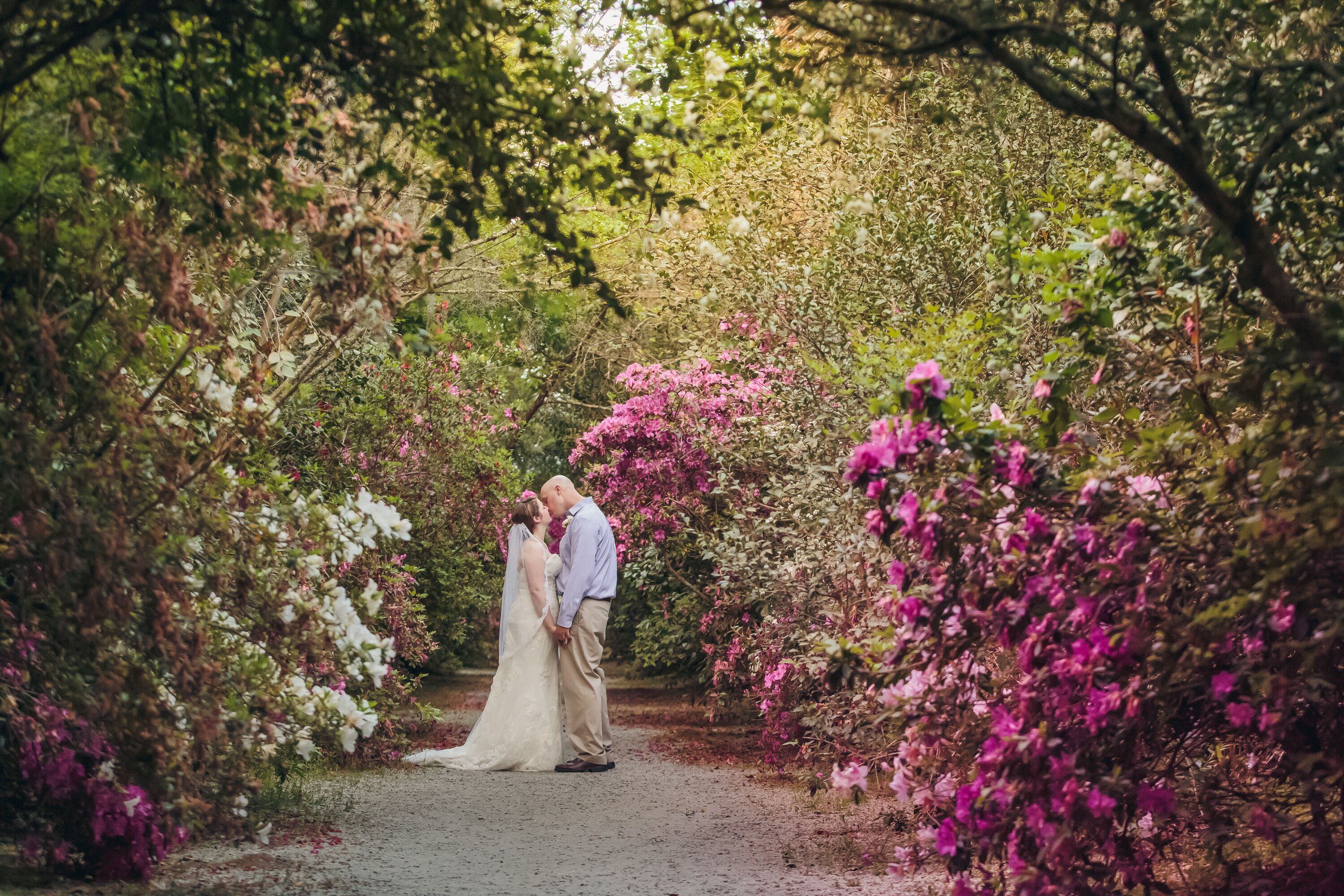 A simple ivory wedding at magnolia plantation and gardens in charleston south carolina for Magnolia gardens charleston sc