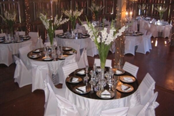 Party Rentals Service Staff In Lansing Mi The Knot