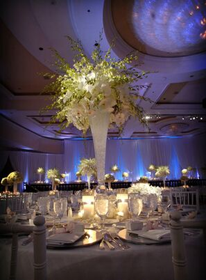 Party Rentals Service Staff In Los Angeles Ca The Knot