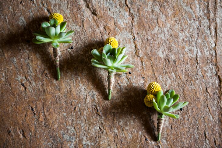 The groom and groomsmen wore succulents and billy balls for rustic boutonnieres.